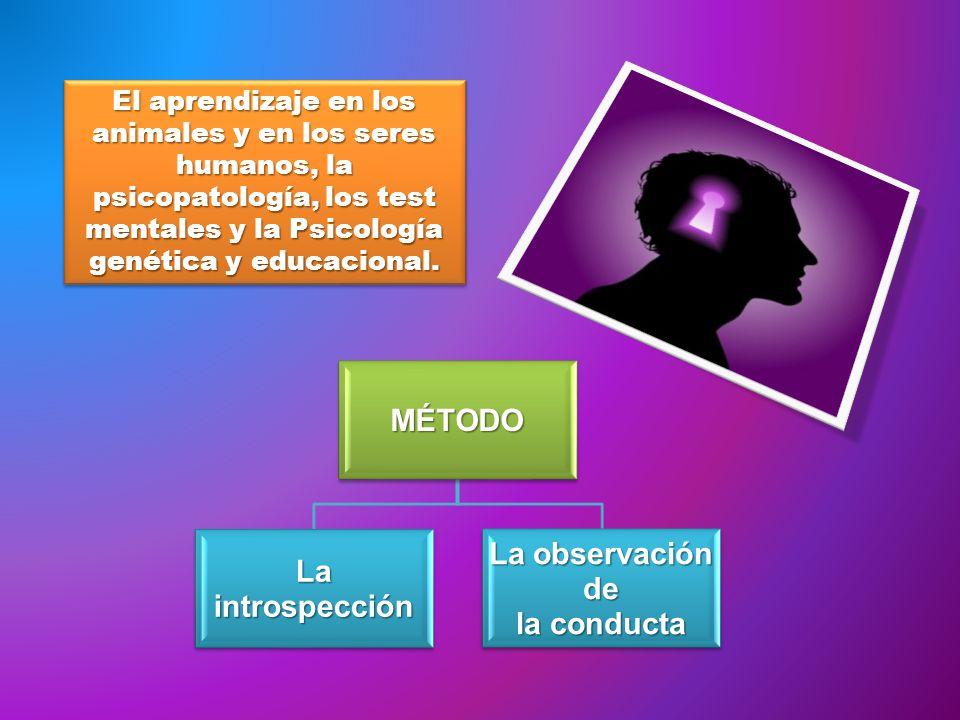 El aprendizaje en los animales y en los seres humanos, la psicopatología, los test mentales y la Psicología genética y educacional. MÉTODO La introspe