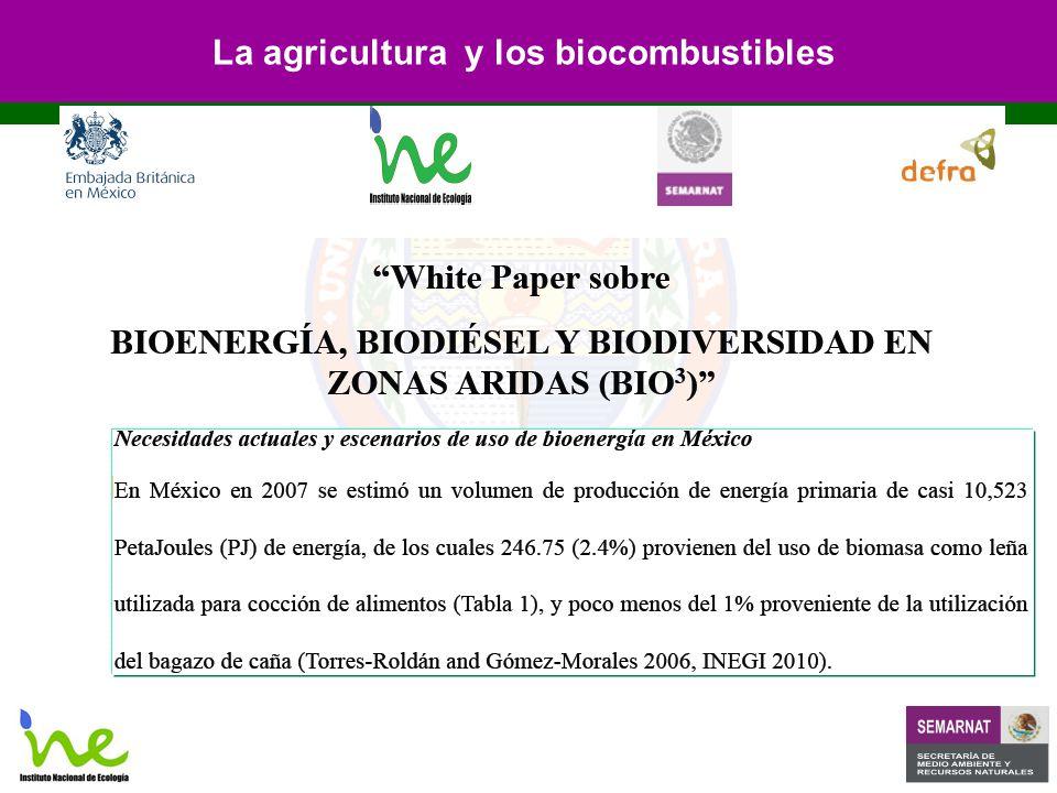 La agricultura y los biocombustibles