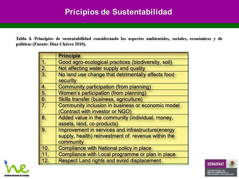 Pricipios de Sustentabilidad