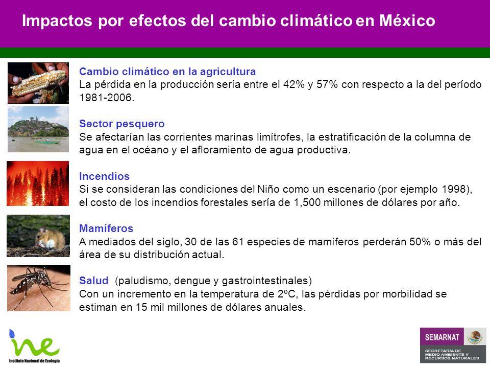 Cambio climático en la agricultura La pérdida en la producción sería entre el 42% y 57% con respecto a la del período 1981-2006.