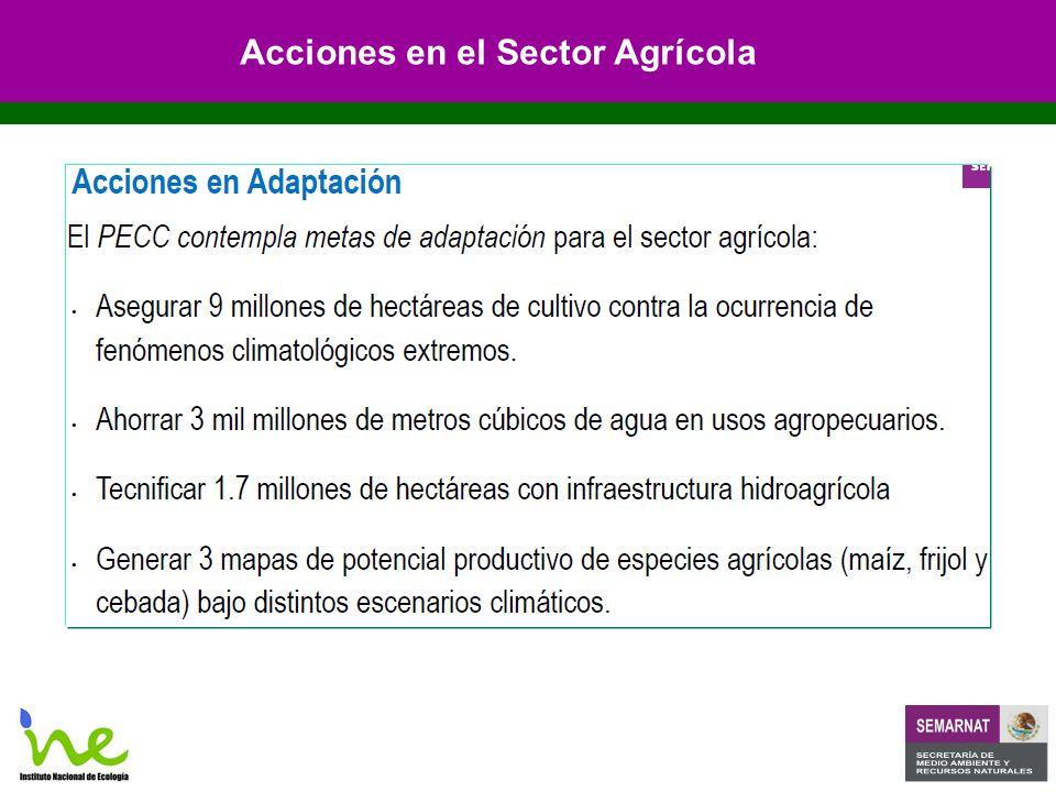 Acciones en el Sector Agrícola