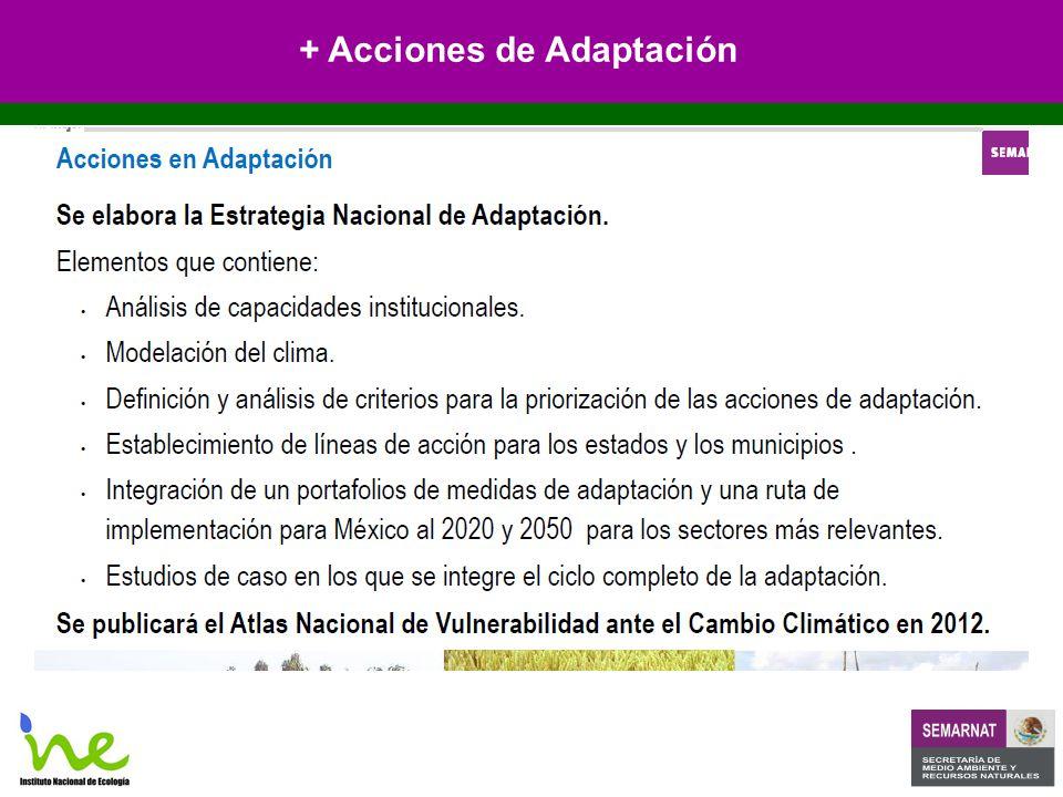 + Acciones de Adaptación