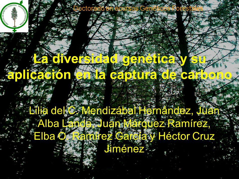La diversidad genética y su aplicación en la captura de carbono Lilia del C.