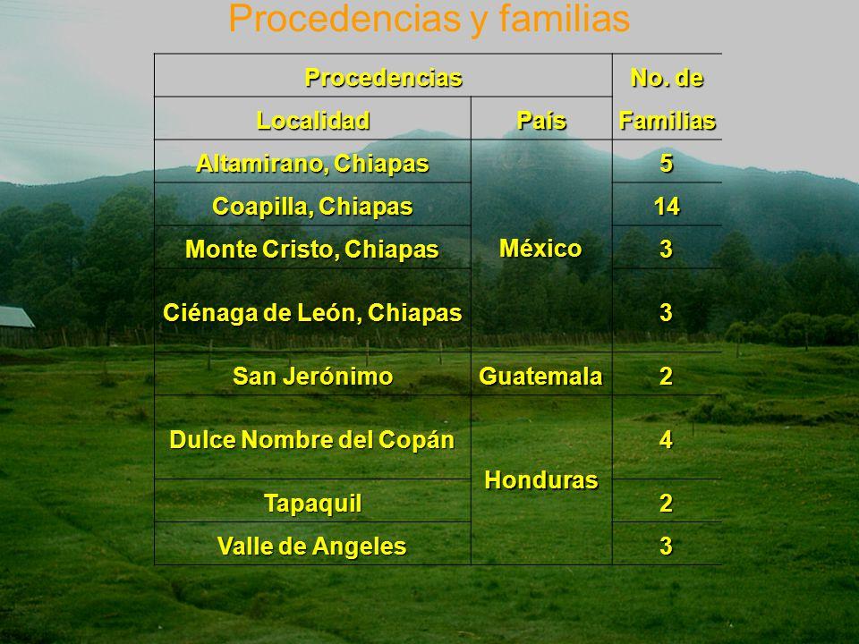 Procedencias y familiasProcedencias No.