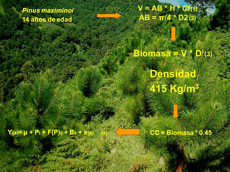 No de individuos Superficie (m 2 ) Total de C (kg) Ton de C/ha 2583 45630 565.40 88.44 NMediaMín.Máx.Var.