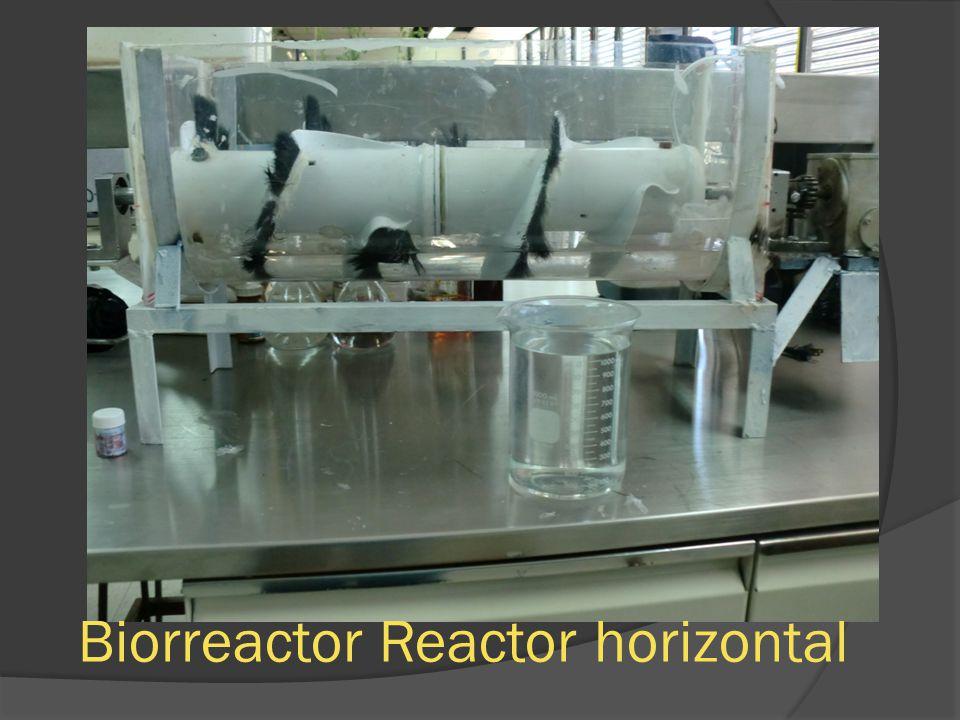 Biorreactor Reactor horizontal
