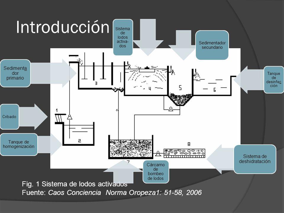 Introducción Fig. 1 Sistema de lodos activados Fuente: Caos Conciencia Norma Oropeza1: 51-58, 2006 Cribado Tanque de homogenización Sedimenta dor prim