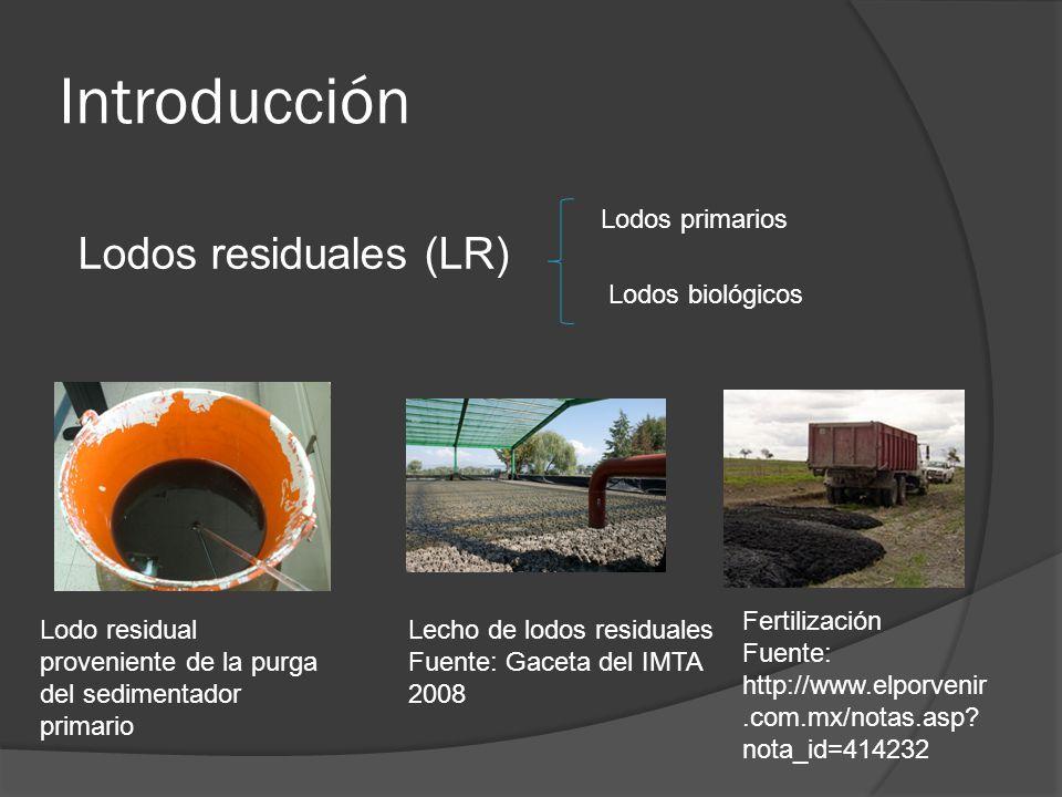 Introducción Lodos residuales (LR) Lecho de lodos residuales Fuente: Gaceta del IMTA 2008 Fertilización Fuente: http://www.elporvenir.com.mx/notas.asp