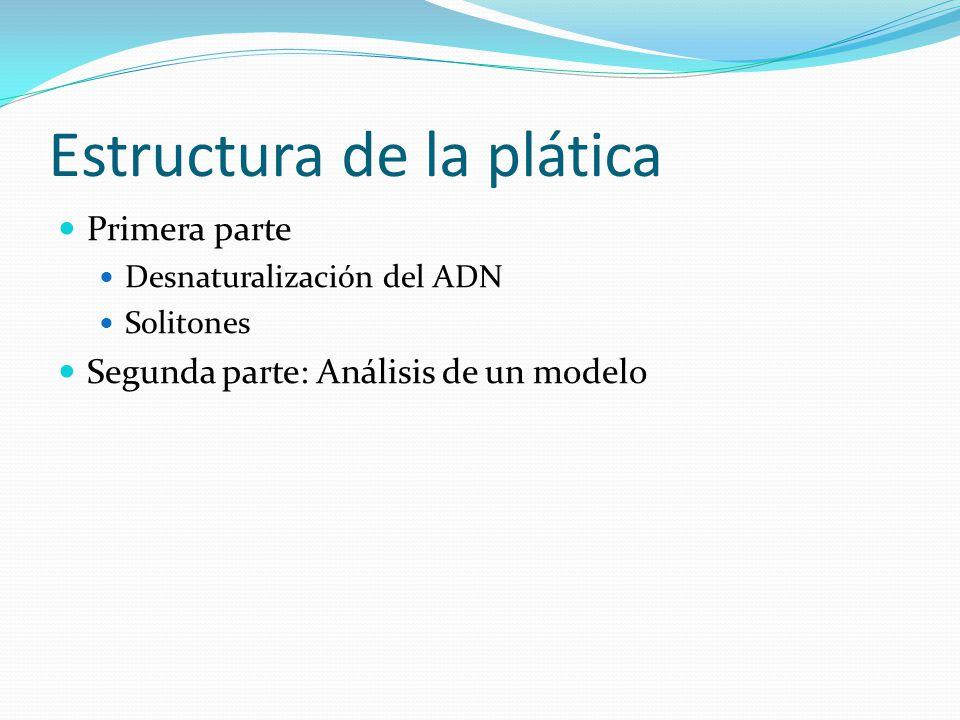 Estructura de la plática Primera parte Desnaturalización del ADN Solitones Segunda parte: Análisis de un modelo