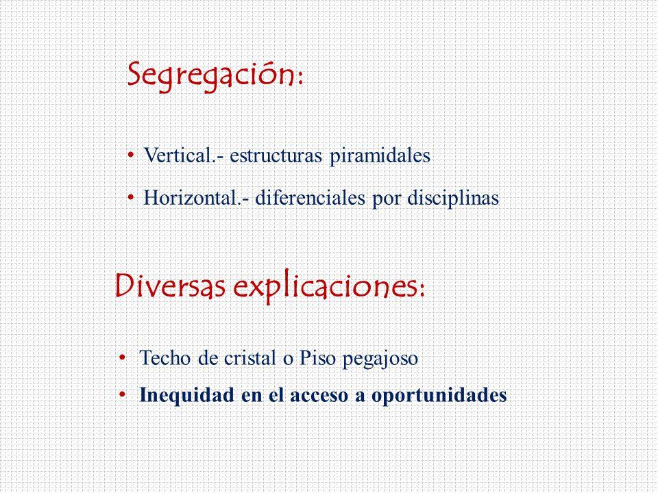 Segregación: Vertical.- estructuras piramidales Horizontal.- diferenciales por disciplinas Diversas explicaciones: Techo de cristal o Piso pegajoso Inequidad en el acceso a oportunidades