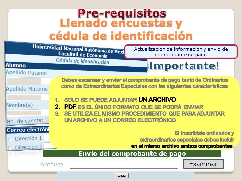 Envío del comprobante de pago Examinar Archivo Llenado encuestas y cédula de identificación Actualización de información y envío de comprobante de pago