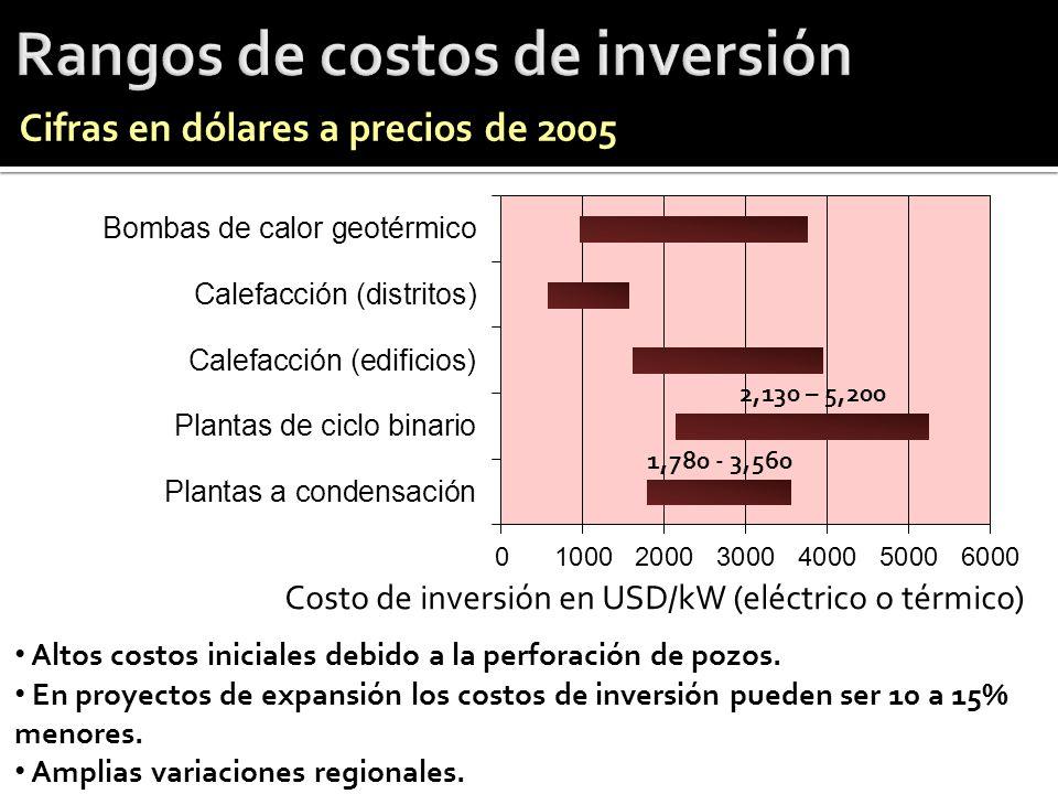 Altos costos iniciales debido a la perforación de pozos. En proyectos de expansión los costos de inversión pueden ser 10 a 15% menores. Amplias variac