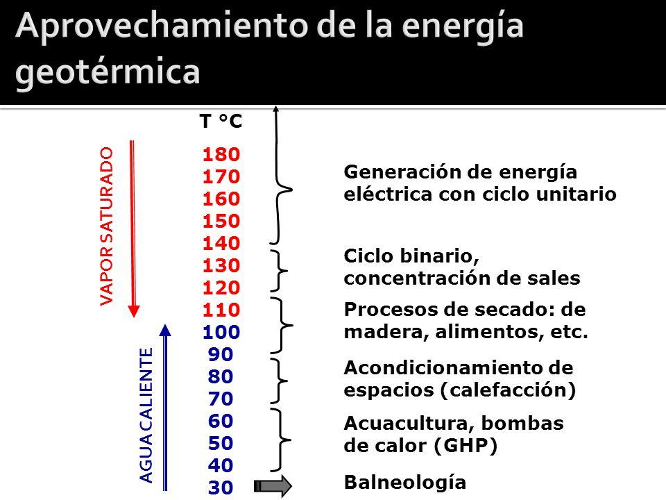 Tipo Fluidos naturales SubtipoTemperatura Uso ActualPotencial Convectivo (Hidrotermal) Sí ContinentalA, I, BEléctrico, usos directos SubmarinoANingunoEléctrico ConductivoNo Somero (<400 m)BDirectos (y GHP) Roca seca caliente (EGS) A, IPrototipos Eléctrico, directos Cuerpos de magma ANinguno Eléctrico, directos Sistemas acuíferos profundos Sí Acuíferos hidrostáticos A, I, BDirectos Eléctrico, directos Geopresurizados Notas: Temperatura: A (alta): >180°C, I (intermedia): 180-100°C, B: Baja: <100°C.