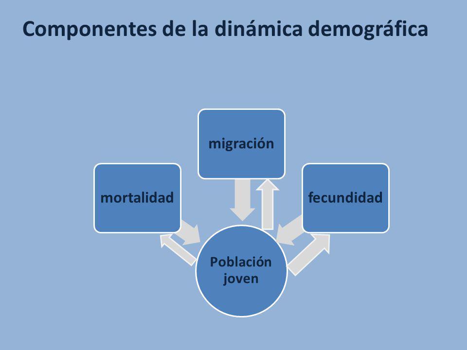 Componentes de la dinámica demográfica Población joven mortalidadmigraciónfecundidad