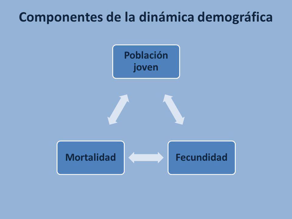 Población joven FecundidadMortalidad Componentes de la dinámica demográfica