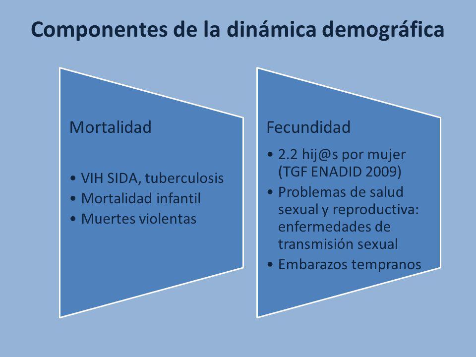 Mortalidad VIH SIDA, tuberculosis Mortalidad infantil Muertes violentas Fecundidad 2.2 hij@s por mujer (TGF ENADID 2009) Problemas de salud sexual y r