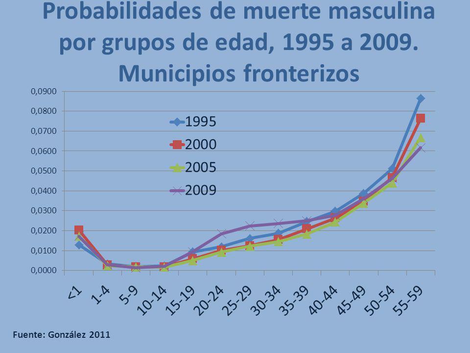 Probabilidades de muerte masculina por grupos de edad, 1995 a 2009. Municipios fronterizos Fuente: González 2011