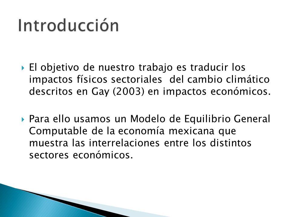 El objetivo de nuestro trabajo es traducir los impactos físicos sectoriales del cambio climático descritos en Gay (2003) en impactos económicos.
