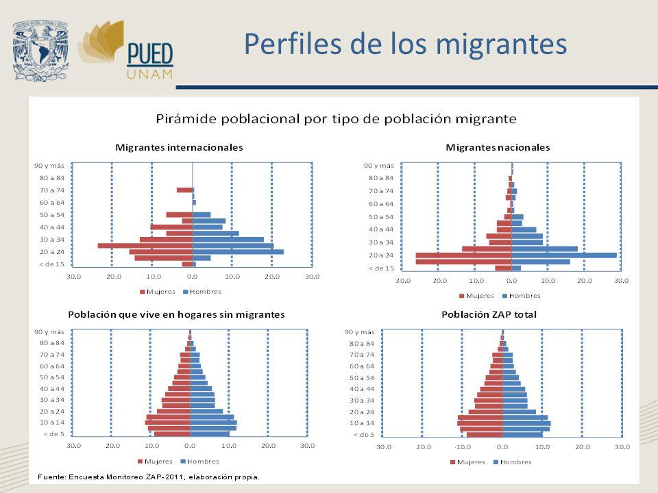 Perfiles de los migrantes
