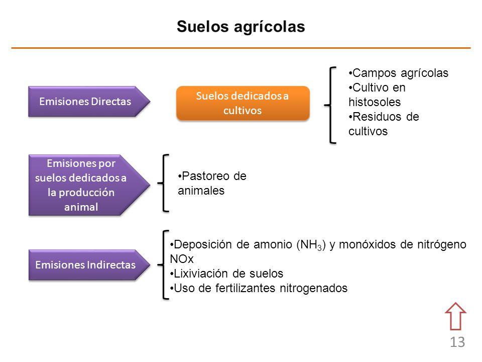 13 Suelos agrícolas Emisiones Directas Emisiones Indirectas Suelos dedicados a cultivos Campos agrícolas Cultivo en histosoles Residuos de cultivos Pa