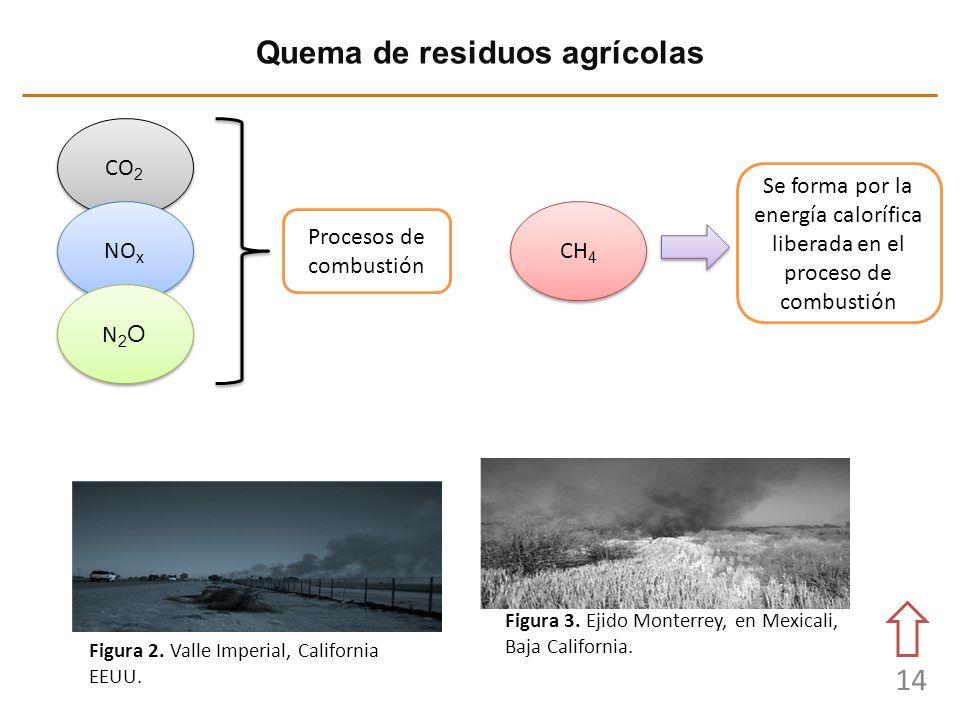 14 Quema de residuos agrícolas Figura 3. Ejido Monterrey, en Mexicali, Baja California. Figura 2. Valle Imperial, California EEUU. CO 2 NO x N2ON2O N2