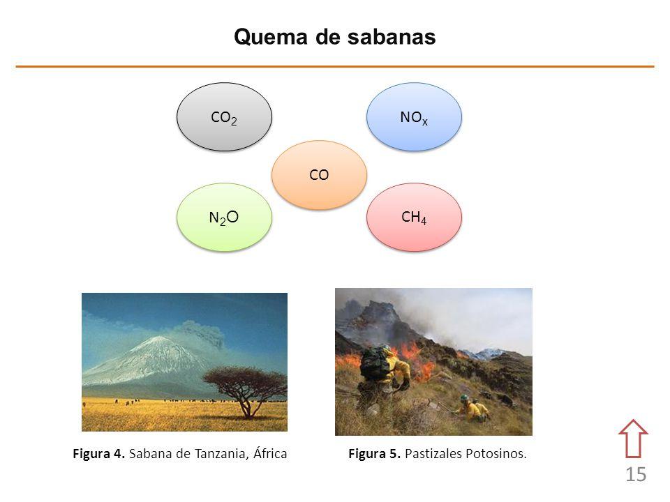 15 Quema de sabanas Figura 4. Sabana de Tanzania, ÁfricaFigura 5. Pastizales Potosinos. CO 2 NO x N2ON2O N2ON2O CH 4 CO
