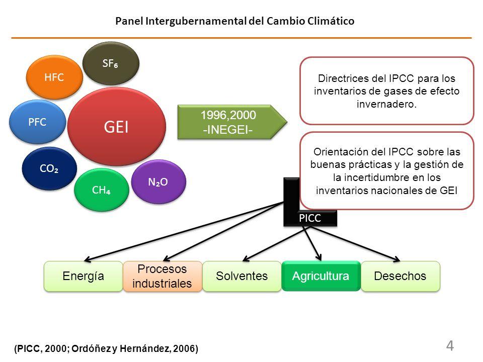 GEI SF 4 Panel Intergubernamental del Cambio Climático CO CH NO PFC HFC 1996,2000 -INEGEI- 1996,2000 -INEGEI- Directrices del IPCC para los inventario