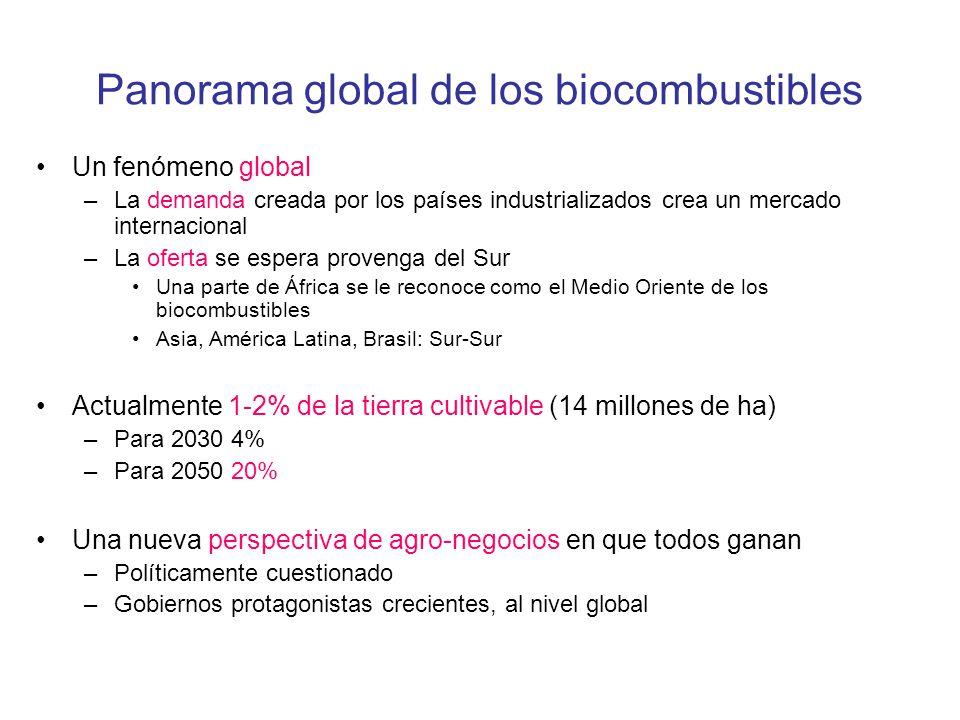 Panorama global de los biocombustibles Un fenómeno global –La demanda creada por los países industrializados crea un mercado internacional –La oferta