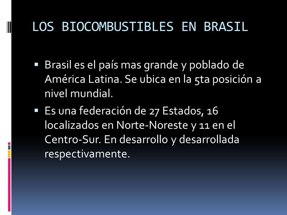 LOS BIOCOMBUSTIBLES EN BRASIL Brasil es el país mas grande y poblado de América Latina. Se ubica en la 5ta posición a nivel mundial. Es una federación