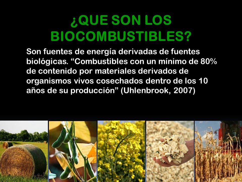 Son fuentes de energía derivadas de fuentes biológicas. Combustibles con un mínimo de 80% de contenido por materiales derivados de organismos vivos co