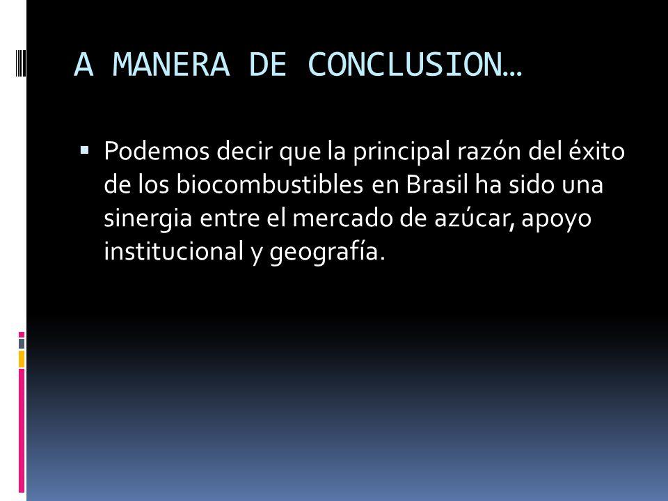 A MANERA DE CONCLUSION… Podemos decir que la principal razón del éxito de los biocombustibles en Brasil ha sido una sinergia entre el mercado de azúca