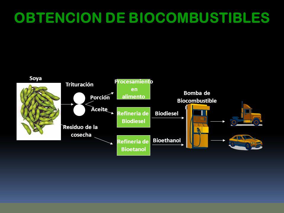 Refineria de Bioetanol Refineria de Biodiesel Trituración Procesamiento en alimento Bomba de Biocombustible Soya Residuo de la cosecha Aceite Porción