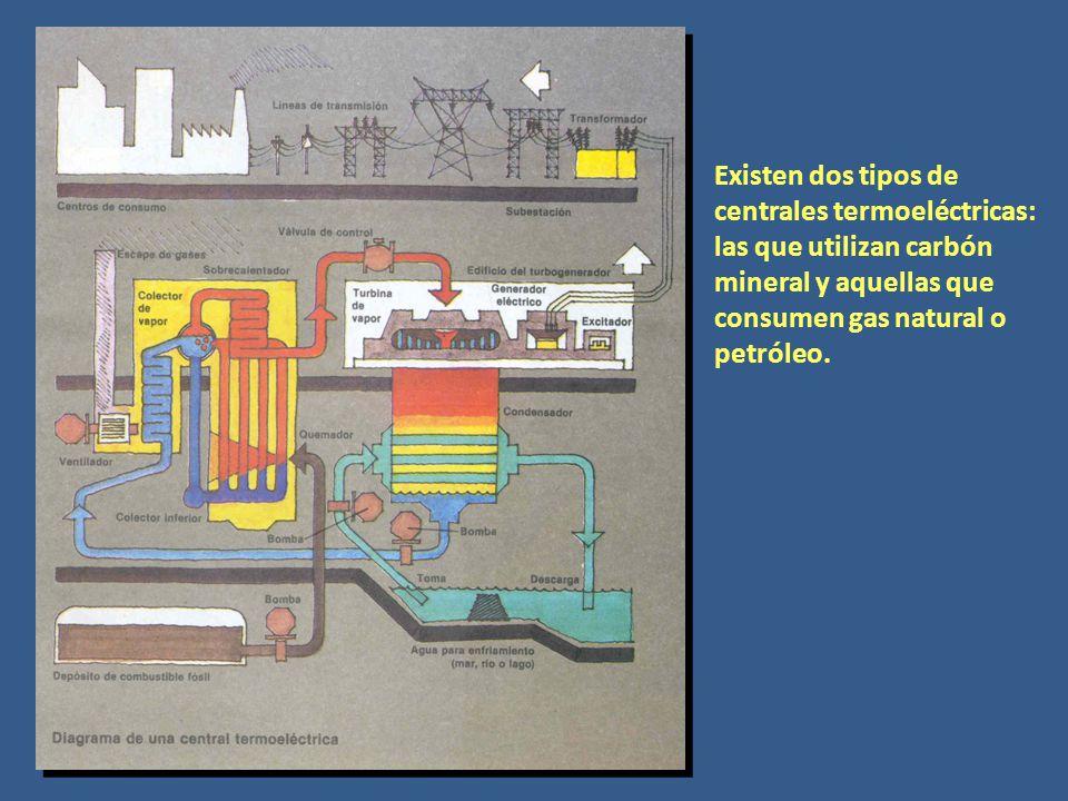 Existen dos tipos de centrales termoeléctricas: las que utilizan carbón mineral y aquellas que consumen gas natural o petróleo.