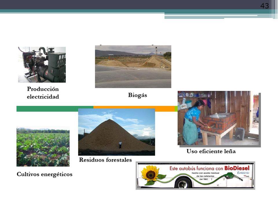 La Bioenergía en México 43