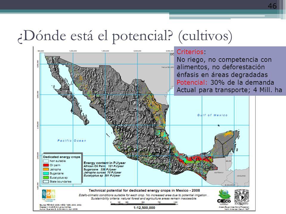 46 ¿Dónde está el potencial? (cultivos) Criterios: No riego, no competencia con alimentos, no deforestación énfasis en áreas degradadas Potencial: 30%