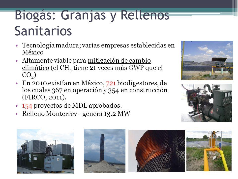 Biogás: Granjas y Rellenos Sanitarios Tecnología madura; varias empresas establecidas en México Altamente viable para mitigación de cambio climático (el CH 4 tiene 21 veces más GWP que el CO 2 ) En 2010 existían en México, 721 biodigestores, de los cuales 367 en operación y 354 en construcción (FIRCO, 2011).