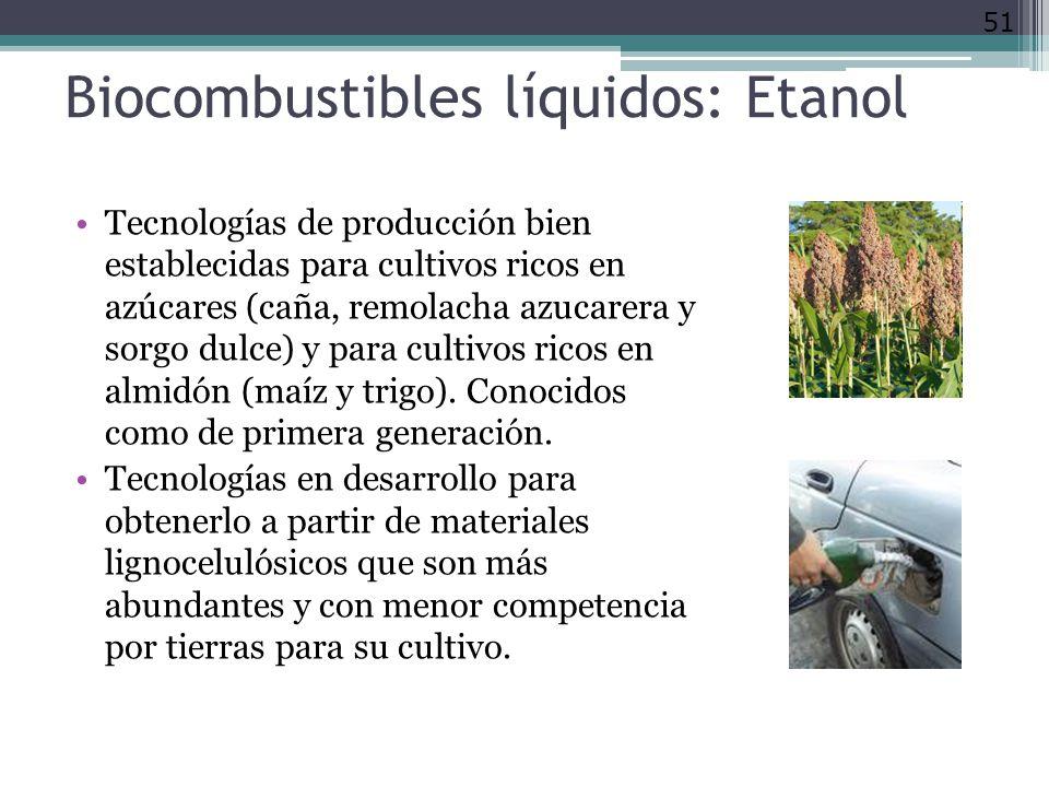 Biocombustibles líquidos: Etanol Tecnologías de producción bien establecidas para cultivos ricos en azúcares (caña, remolacha azucarera y sorgo dulce) y para cultivos ricos en almidón (maíz y trigo).