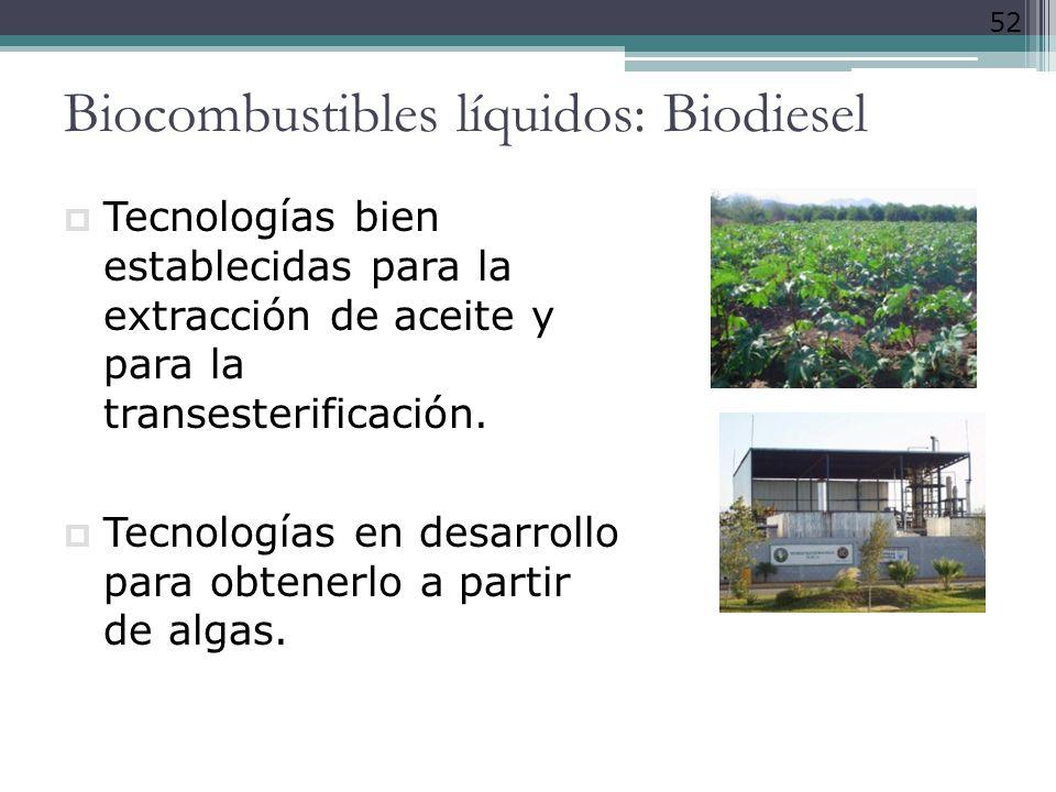 52 Biocombustibles líquidos: Biodiesel Tecnologías bien establecidas para la extracción de aceite y para la transesterificación. Tecnologías en desarr