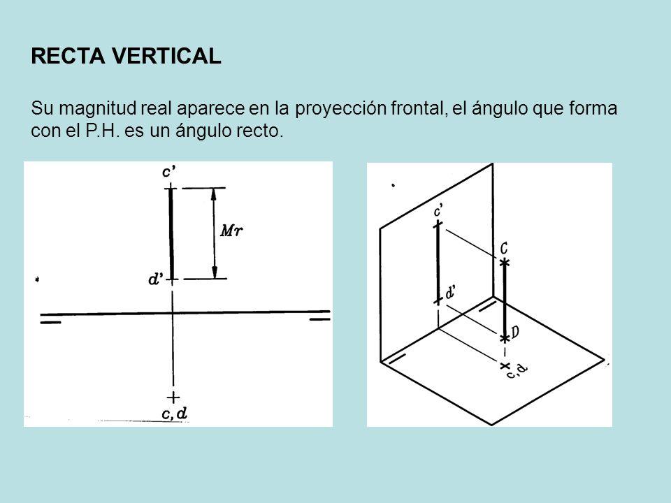Su magnitud real aparece en la proyección frontal, el ángulo que forma con el P.H. es un ángulo recto.