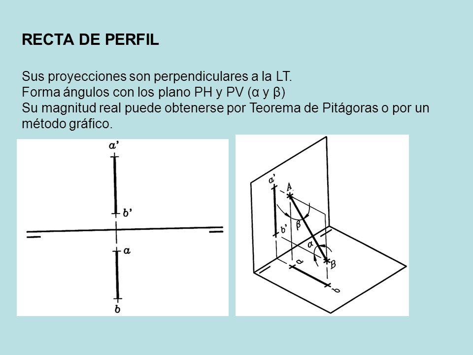 RECTA DE PERFIL Sus proyecciones son perpendiculares a la LT. Forma ángulos con los plano PH y PV (α y β) Su magnitud real puede obtenerse por Teorema