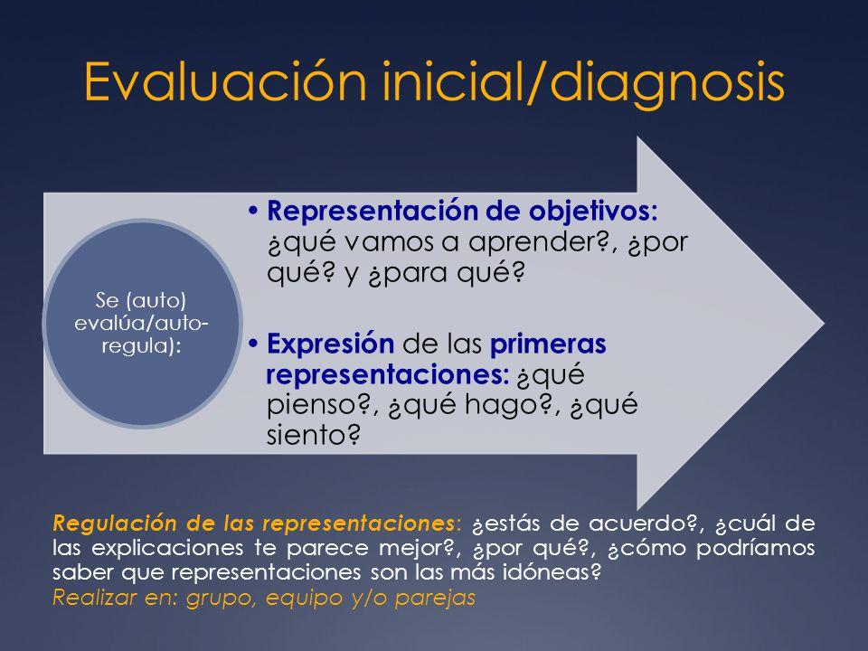 Evaluación inicial/diagnosis Representación de objetivos: ¿qué vamos a aprender?, ¿por qué? y ¿para qué? Expresión de las primeras representaciones: ¿