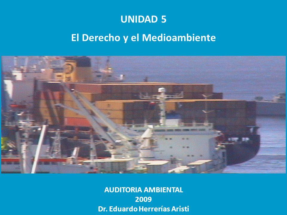 UNIDAD 5 El Derecho y el Medioambiente AUDITORIA AMBIENTAL 2009 Dr. Eduardo Herrerías Aristi