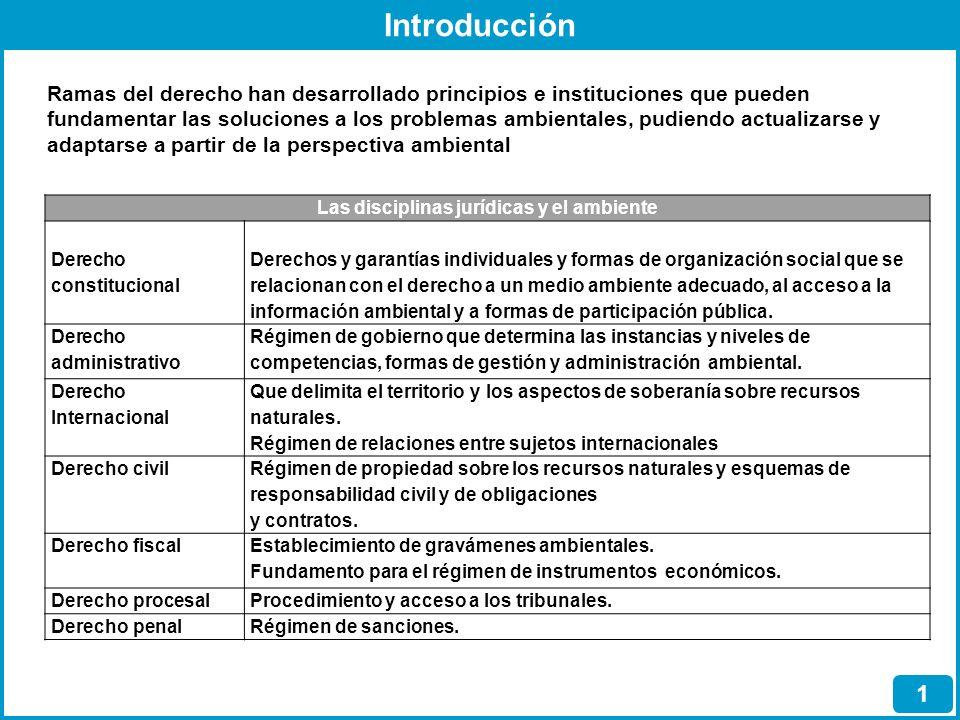 Introducción 1 Ramas del derecho han desarrollado principios e instituciones que pueden fundamentar las soluciones a los problemas ambientales, pudien