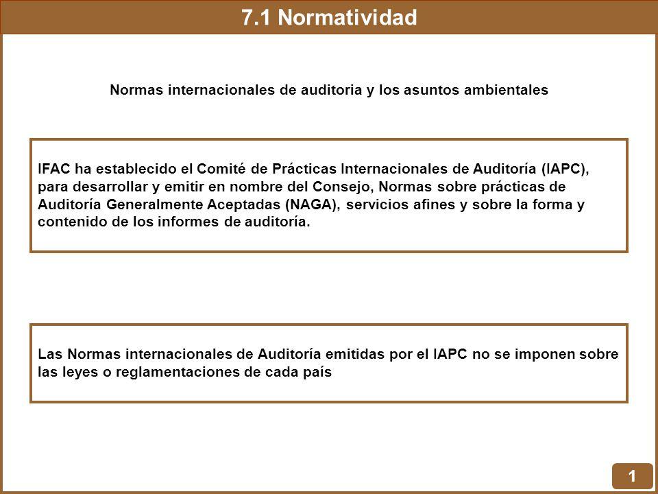 7.1 Normatividad 1 Normas internacionales de auditoria y los asuntos ambientales IFAC ha establecido el Comité de Prácticas Internacionales de Auditor