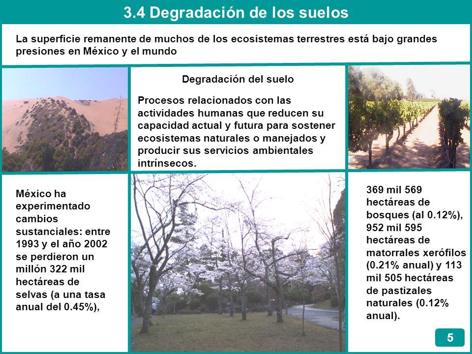 3.5 Deforestación 6 Eliminación total de la vegetación nativa para cambiar el uso del suelo con el fin de favorecer a actividades tales como la agricultura y la ganadería, y el desarrollo urbano, industrial, de transporte u otra infraestructura Causas principales Cambio del uso del suelo Tala ilegal Incendios forestales Áreas Naturales Protegidas (ANP) Reservas de la biosfera Parques nacionales Monumentos naturales Áreas de protección de recursos naturales Áreas de protección de flora y fauna Santuarios