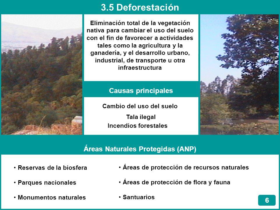 3.5 Deforestación 6 Eliminación total de la vegetación nativa para cambiar el uso del suelo con el fin de favorecer a actividades tales como la agricu