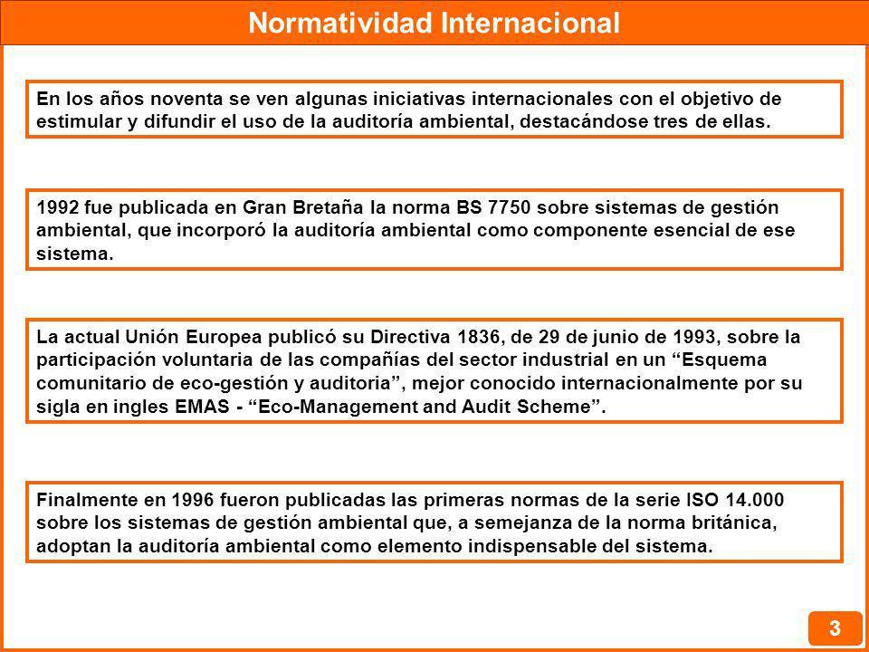Normatividad Internacional 3 En los años noventa se ven algunas iniciativas internacionales con el objetivo de estimular y difundir el uso de la audit
