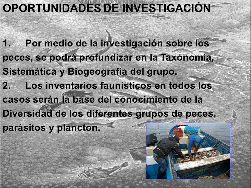 OPORTUNIDADES DE INVESTIGACIÓN 1.