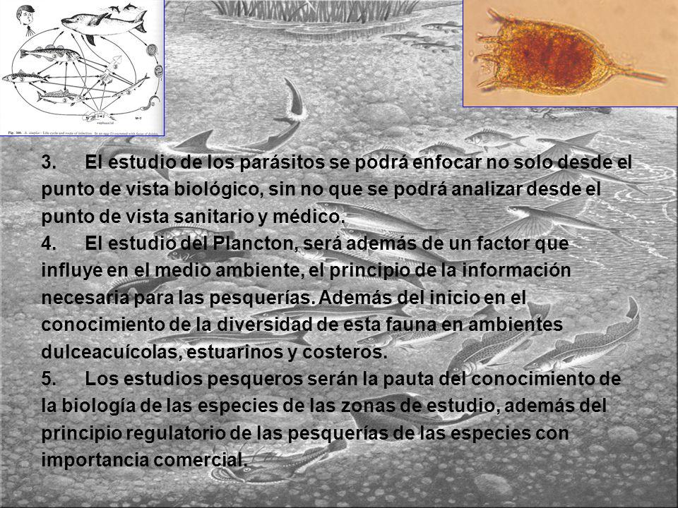 3. El estudio de los parásitos se podrá enfocar no solo desde el punto de vista biológico, sin no que se podrá analizar desde el punto de vista sanita
