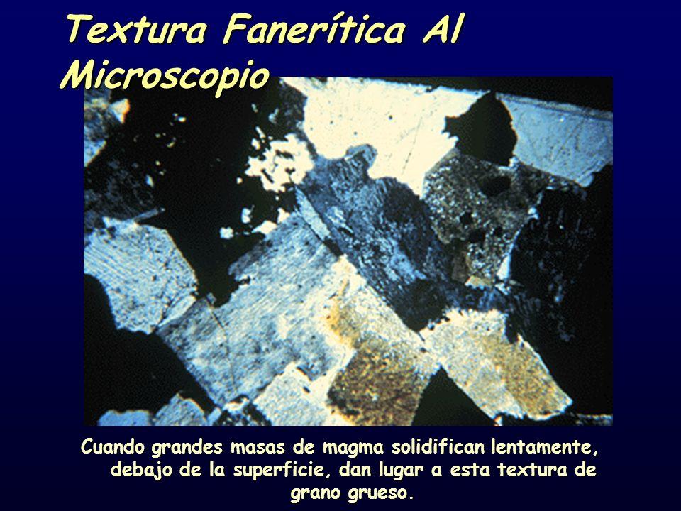 Textura Fanerítica Al Microscopio Cuando grandes masas de magma solidifican lentamente, debajo de la superficie, dan lugar a esta textura de grano grueso.
